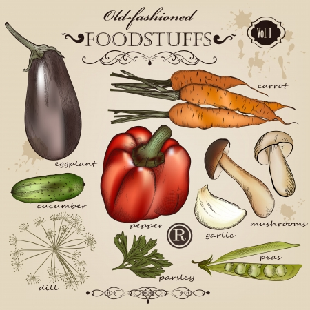 Vector set of detailed foodstuffs in retro style for design