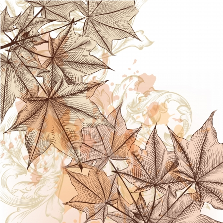 Vector floral baCKGROUND WITH HAND DRAWN maple leafs