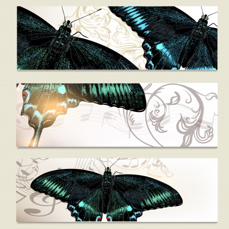 abstractly: Set of floral  vector cards  with butterflies for  your design Illustration