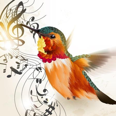 pajaro: Ilustración vectorial realista con colibrí y notas para el diseño