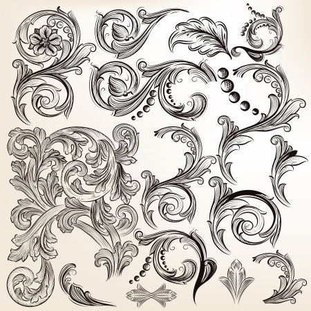 victorian anniversary: Vector set of calligraphic elements for design  Calligraphic vector