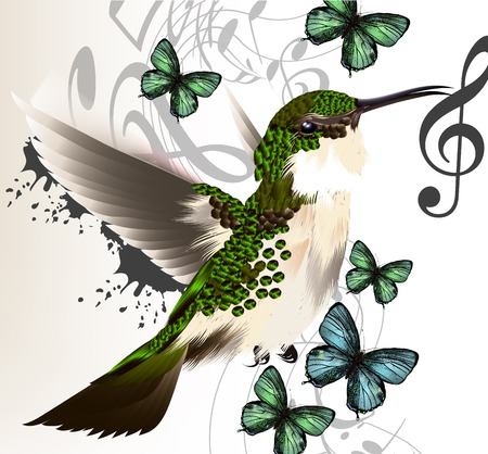 Vector illustration with realistic humming bird  and notes for desig Vector