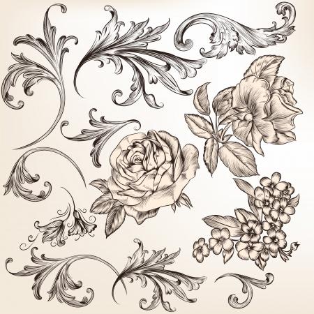 burmak: Girdap ve tasarım Hat vektörü için çiçek elemanları vector set