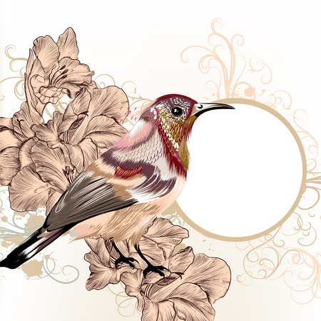Vector illustration with colorful bird in watercolor style 일러스트
