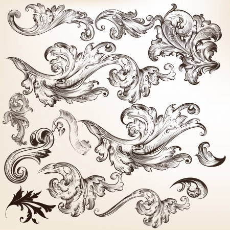 ornamental scroll: Vector set of swirl elements for design  Calligraphic vector Illustration