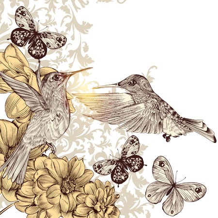 hand drawn wings: Fashion vector background with detailed hand drawn flourishes and birds