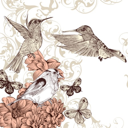 Fashion vector background with detailed hand drawn flourishes and birds Vector