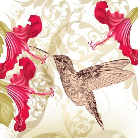 hummingbird: Vector illustration with bird and flowers