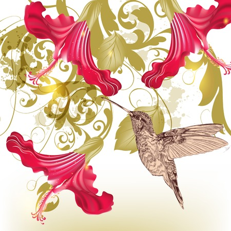 Vector illustration with lily and hibiscus flowers Illustration