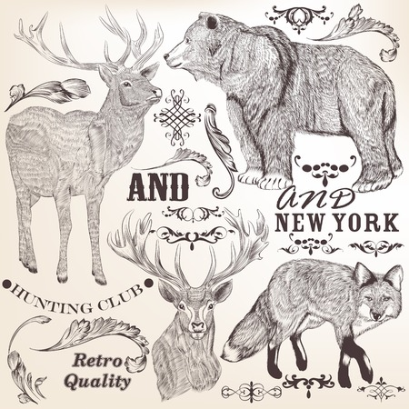 animal border: Collection  of high detailed vector animals for design