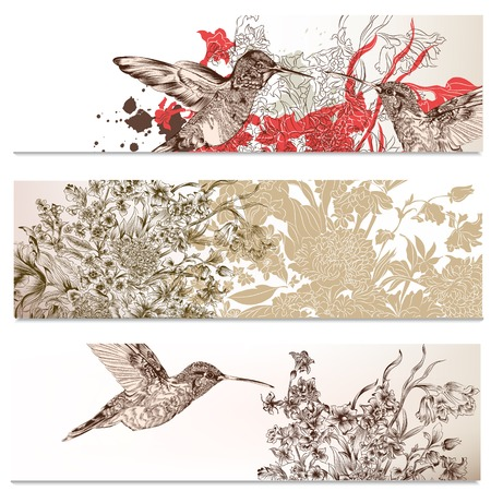 Vector set of floral hand drawn brochures with hummingbirds for business cards design Vector
