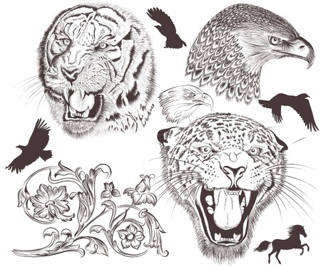 Collection of vector hand drawn animals Vector