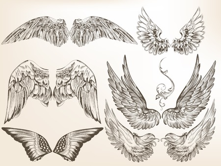Vector set of hand drawn wings isolated on white