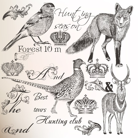 Collectie vector dieren en vintage elementen voor ontwerp Stock Illustratie