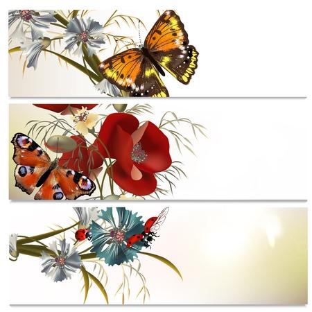 flower fields: Set of floral brochures with field flowers for design Illustration