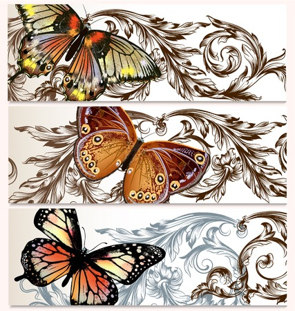 Set of floral vector backgrounds with butterflies for your design Vector