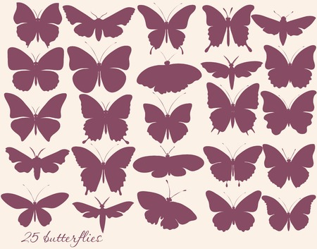 monochromic: Vector set of detailed silhouettes of butterflies for design