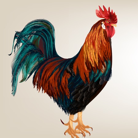 High detailed realistic vector cock