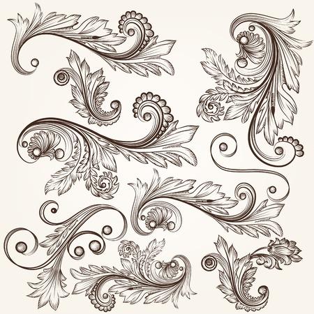 swirl: Vector set of calligraphic elements for design. Calligraphic vector