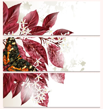 abstractly: Vector set of floral brochures for your design