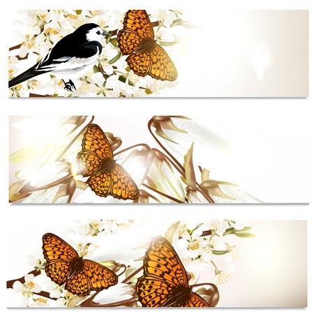 champ de fleurs: Ensemble de brochures floral avec des fleurs sur le terrain pour la conception