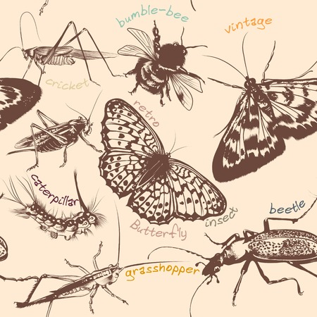 Seamless wallpaper pattern with detailed insects Vector