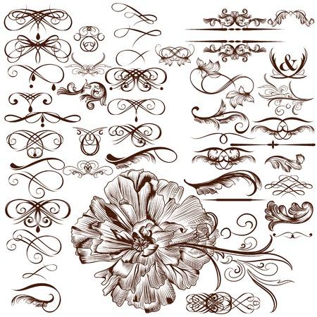 retro label: Vector set of flourishes for design. Calligraphic vector