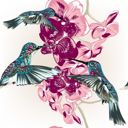 hummingbird: seamless pattern with fashion stylish orchids and hummingbirds Illustration