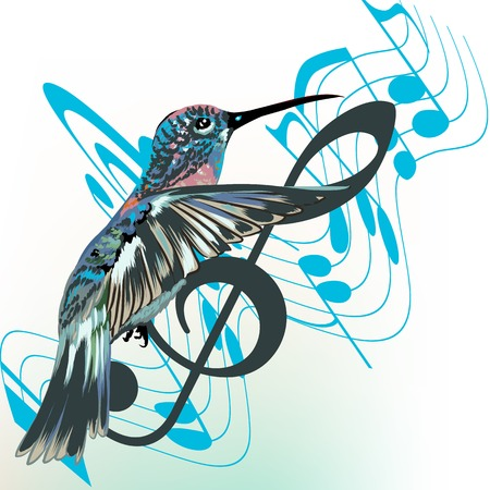 hummingbird: Music background with notes, treble clef and hummingbird Illustration