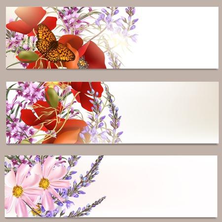 Set of floral brochures with field flowers for design Illustration