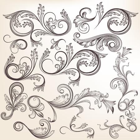 デザインの渦要素のベクトルを設定します。書道ベクトル