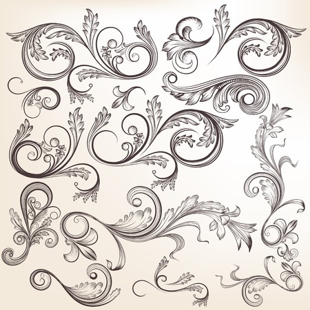 Vector set of swirl elements for design. Calligraphic vector