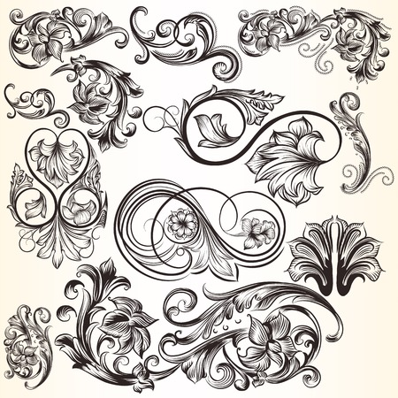 vintage scroll: Vector set of swirl elements for design. Calligraphic vector