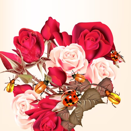 rosy: Floral background with flowers and roses