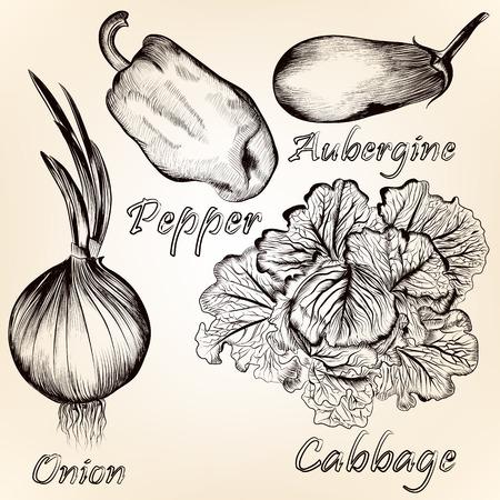 aliments: Vector set des denr�es alimentaires d�taill�es dans le style r�tro pour la conception