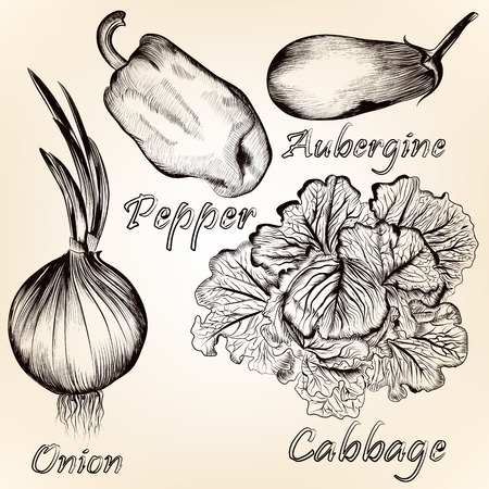 aubergine: Vector set of detailed foodstuffs in retro style for design