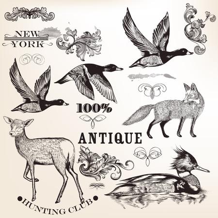 grabado antiguo: Conjunto de vector detalladas animales para el dise�o