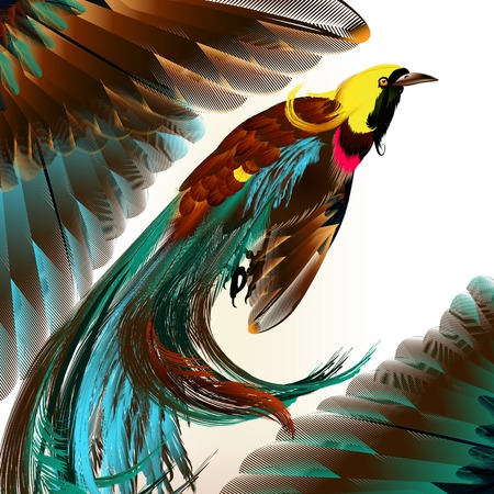 Vector illustration with realistic tropical birds for design