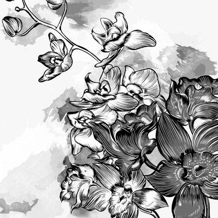 floral grunge: Floral grunge background with orchids