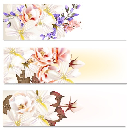 rosy: Set of floral brochures with roses flowers for design