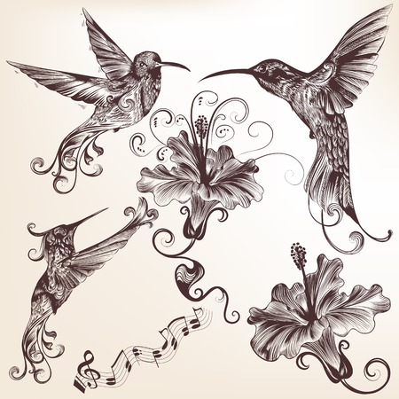 hand drawn wings: Vector set of detailed hand drawn birds for design