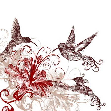 Vector background with birds and hibiscus for design Illustration