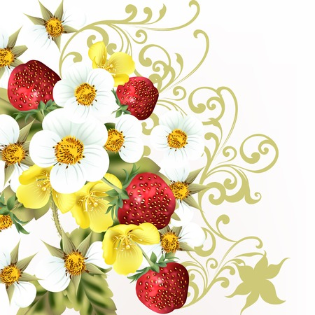 Red strawberry berries with flowers Vector