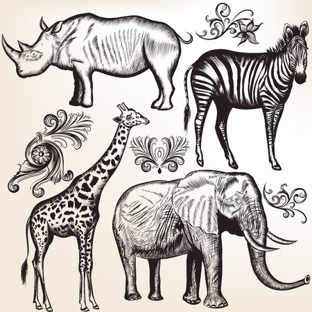 giraffe silhouette: Vector set of hand drawn detailed African animals