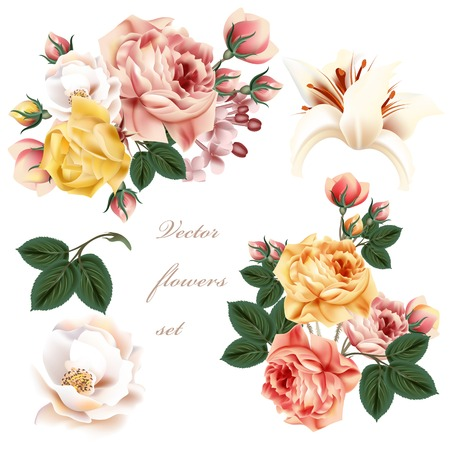 graphic pastel: Collection of realistic pastel flowers