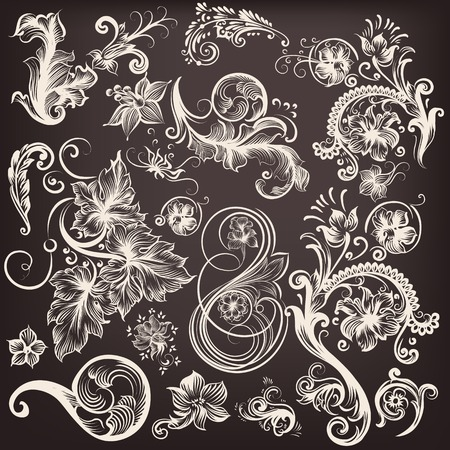 Collection of vector swirl  flourishes