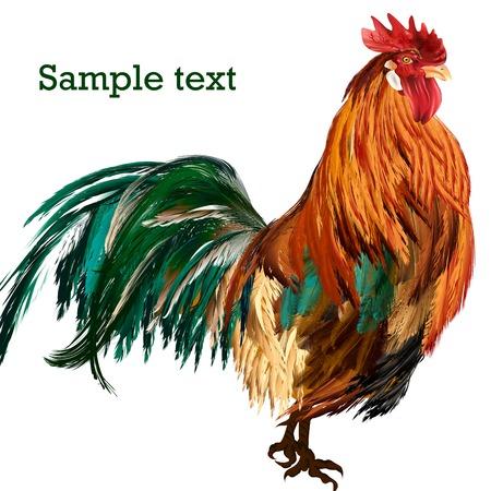animal cock: Alta dettagliata cazzo vettore realistico