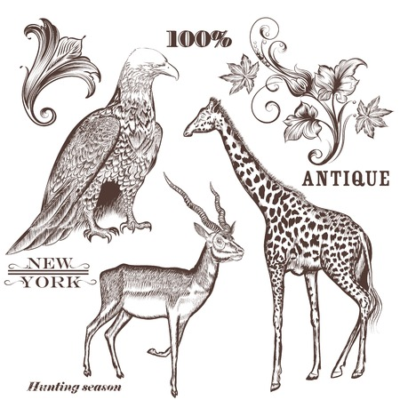 giraffe silhouette: Collection of vector hand drawn animals