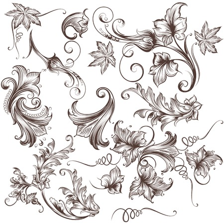 floral swirls: Collection of vector hand drawn floral swirls