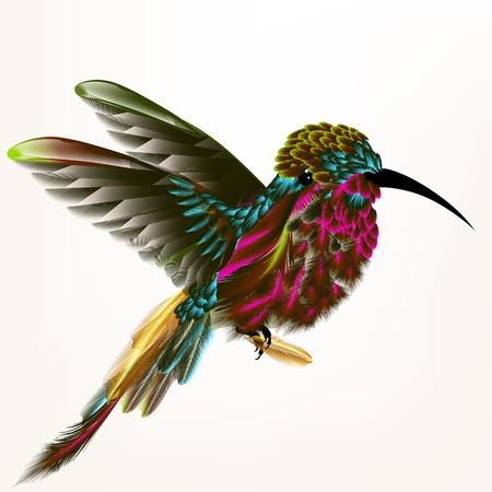Colorful hummingbird in fly holding feather
